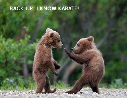 back-up-i-know-karate
