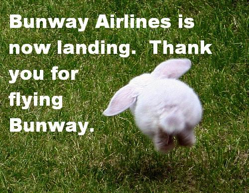 bunwaylanding
