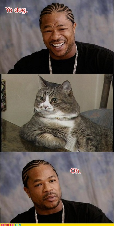 yodawgcat