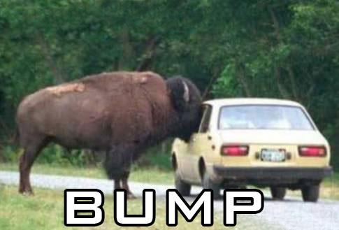 bump3