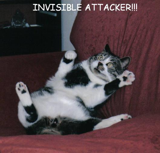 invisible12
