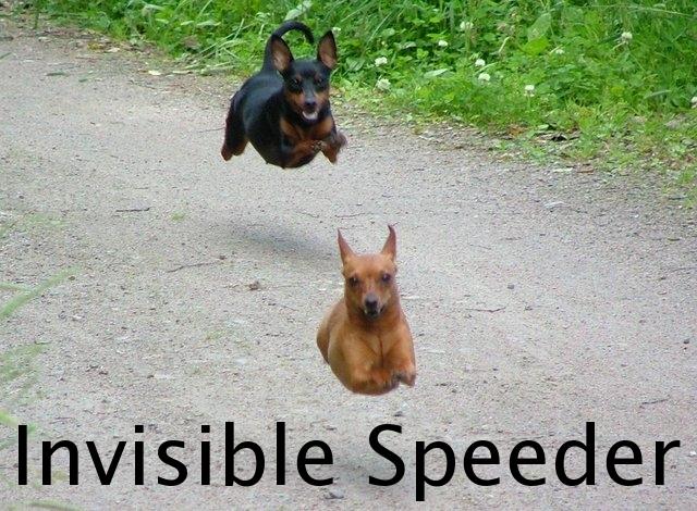 invisible14