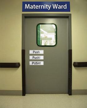 pushpush