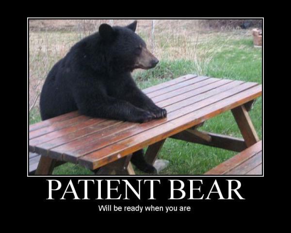 patient-bear-demotivational-poster