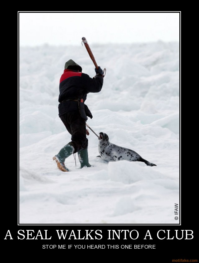 a-seal-walks-into-a-club-demotivational-poster-1220319085
