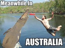 Meanwhile-in-Australia-2