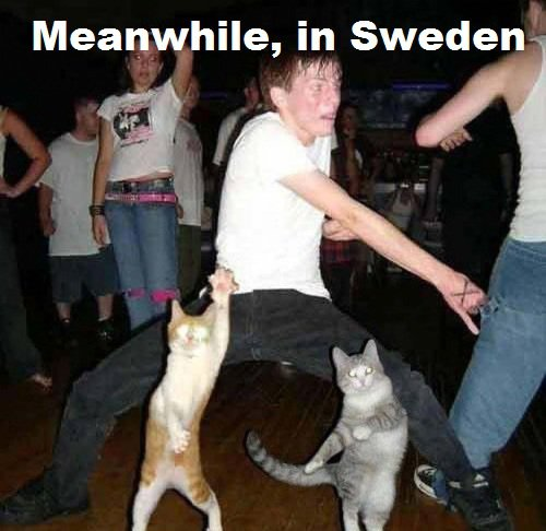 meanwhile-in-sweden