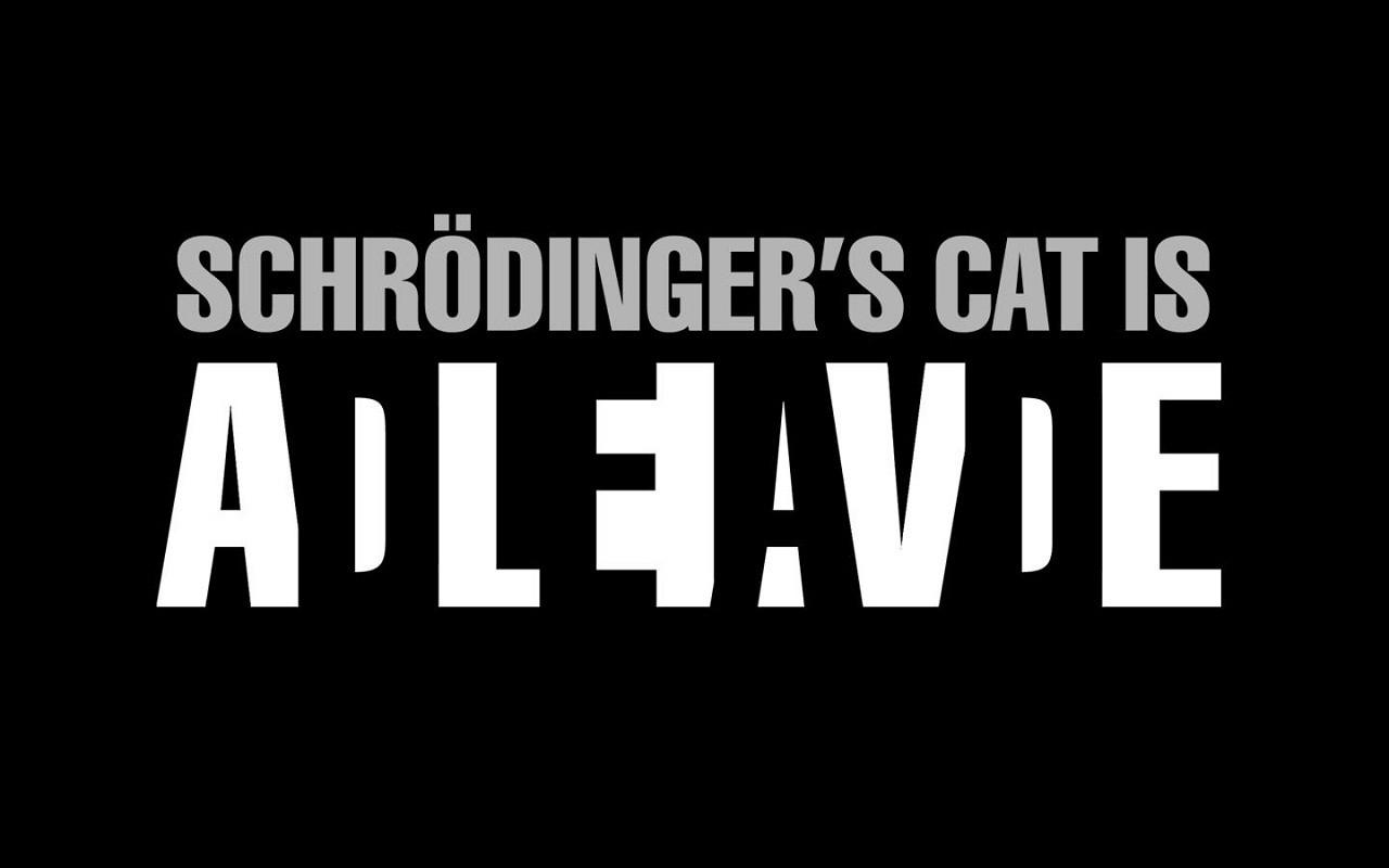 schrodingercat