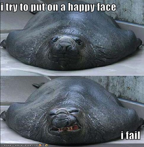 happy face zeeleeuw
