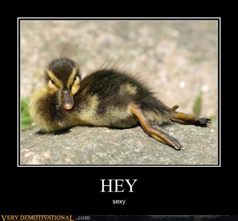 demotivational-posters-hey1