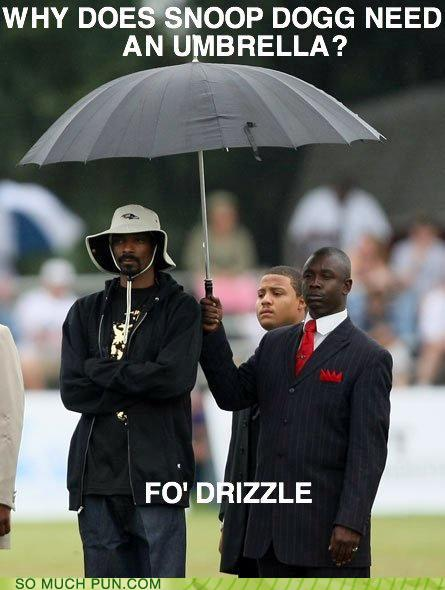 funny-puns-why-does-snoop-dogg-need-anything