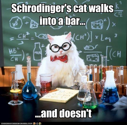 funny-pictures-schrodingers-cat-chemistry-cat