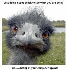 behindComputer