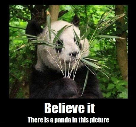 Ninja-Panda