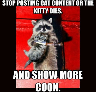 cat+hating+coon.+not+a+repost+oc_be2eea_4366420