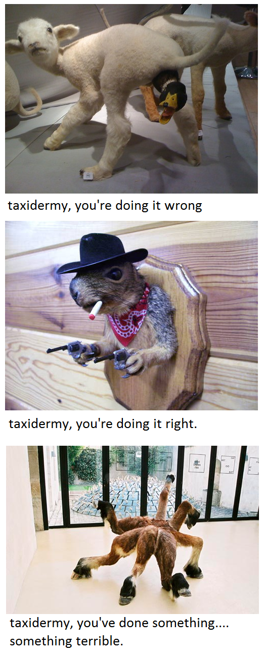 taxidermy+is+doing+something.+they+have+created+a+monster_207f8d_4440441