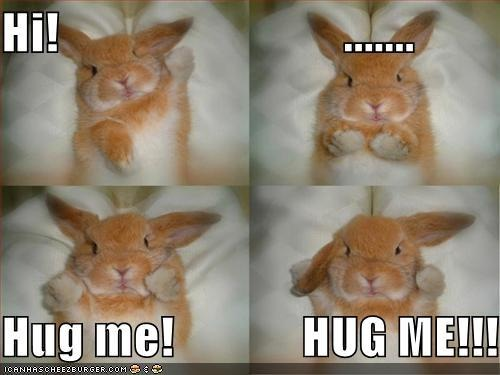 funny-pictures-bunny-wants-hug