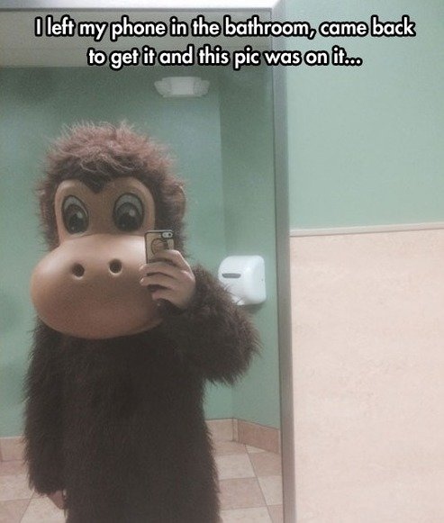 Bathroom+monkey_279f36_5587938