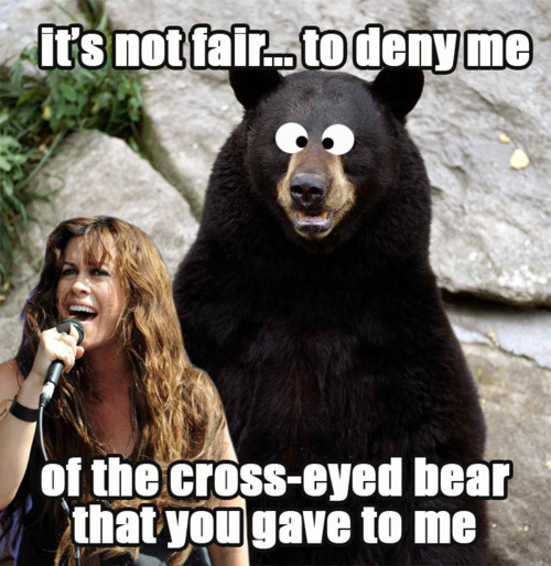 alanis-morissettes-cross-eyed-bear-7410-1291733575-7