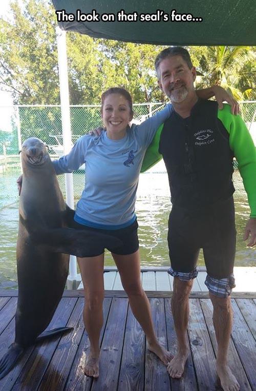 randy-seal